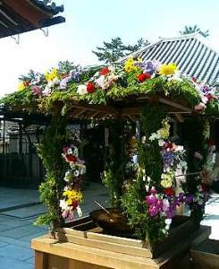 写真 ラン、カーネーション、ヒヤシンスなどで飾られた興福寺の花御堂