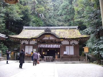 写真 木に囲まれ、檜皮葺の屋根の社殿