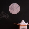 黒い背景に月とススキの絵、折り紙で折られたお月見団子を合わせた写真