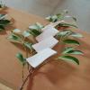 結婚式 – 橿原神宮
