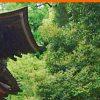 ご参拝の案内【ご祈祷】|石上神宮[いそのかみじんぐう]公式サイト|奈良県天理市
